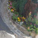 fleurissement_19